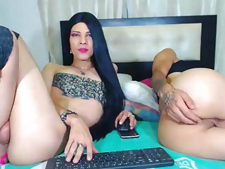 Shemale Tranny Amateur Anally